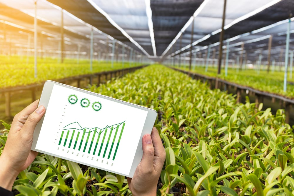 What Are the Applications of Blockchain in Agriculture?